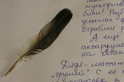 Дневник путешественника своими руками для ребенка