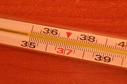 Что делать, если разбился ртутный градусник