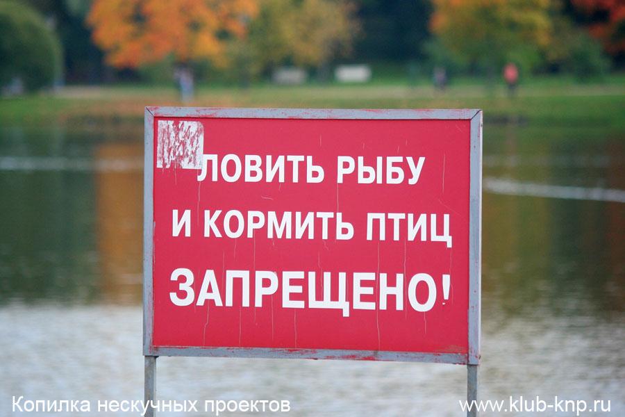 Царицынский парк. Фото