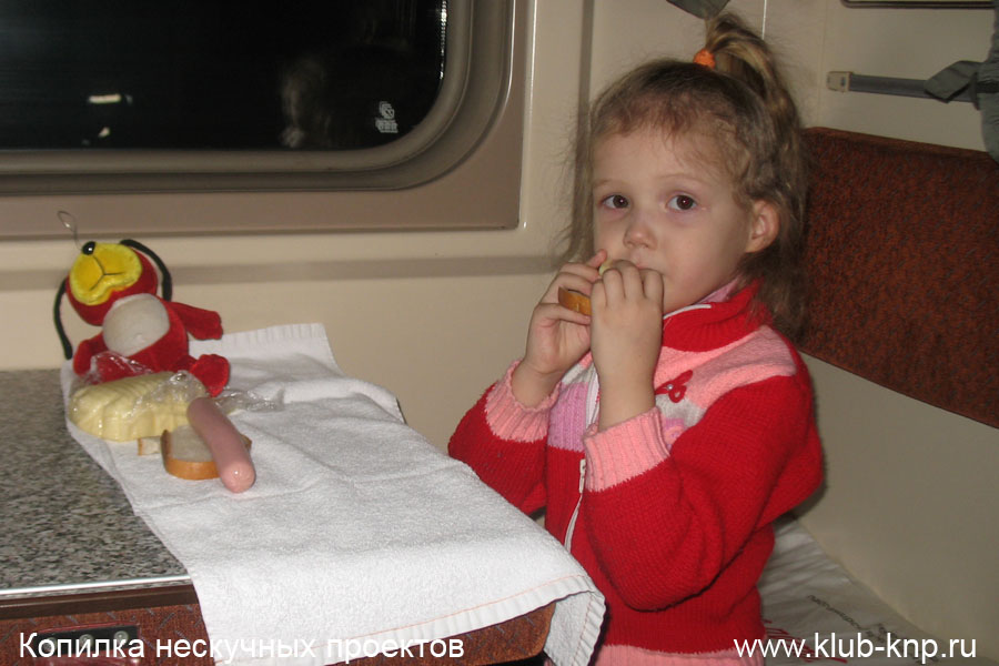 Как ехать с ребенком в поезде