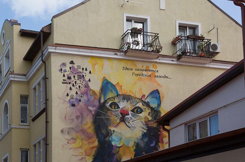 Зеленогорск – уютный город кошек.
